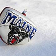 Maine Black Bears Ornament Art Print
