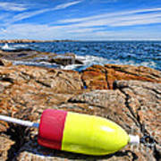 Maine Coast Art Print by Olivier Le Queinec