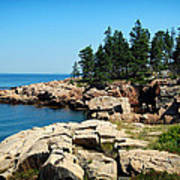 Maine's Rocky Coastline Art Print