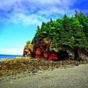 Maine's Rugged Shore Art Print