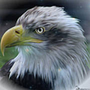Majestic Eagle Of The Usa - Featured In Feathers And Beaks-comfortable Art And Nature Groups Art Print