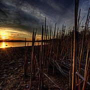 Majestic Lake Sunset Art Print