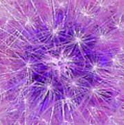 Make A Wish In Purple Art Print