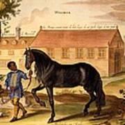 Makomilia, A Turk, Led By A Negro Art Print