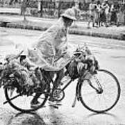 Man Riding Bicycle Carrying Chickens Art Print