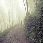 Man Walking In Foggy Forest By Fzant