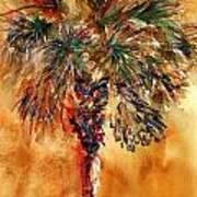 Manasota Key Palm 1 Art Print