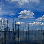 Manasquan Reservoir Panorama Art Print
