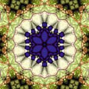 Mandala 114 Art Print