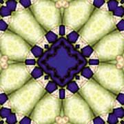 Mandala 118 Art Print