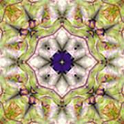 Mandala 127 Art Print