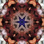 Mandala 14 Art Print by Terry Reynoldson