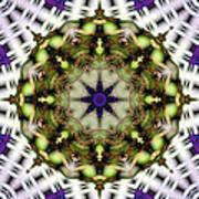 Mandala 21 Art Print