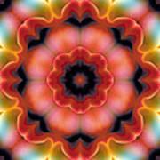 Mandala 91 Art Print