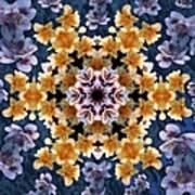 Mandala Alstro Art Print