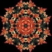 Mandala Daylily Art Print