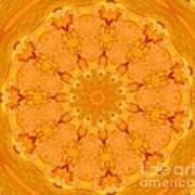 Mandala Night Bloom Art Print