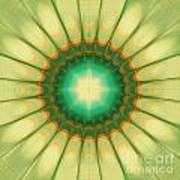 Mandala Of The Hope Art Print