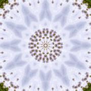 Mandala105 Art Print