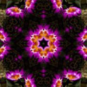 Mandala73 Art Print