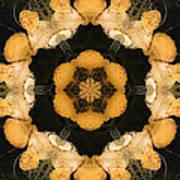 Mandala81 Art Print