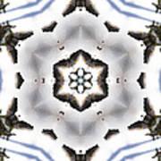 Mandala82 Art Print