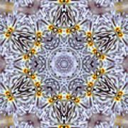Mandala90 Art Print