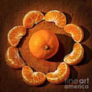 Mandarin - Vignette Art Print by Kaye Menner