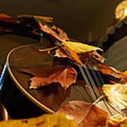 Mandolin Autumn 3 Art Print