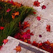 Maple Leaf Fall 3 - The Getty Art Print
