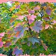 Maple Magnetism Painting Art Print