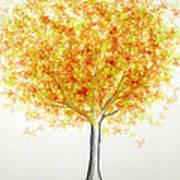Maple Tree 1 Art Print