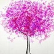 Maple Tree 4 Art Print