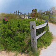 Marconi Beach Path Art Print