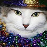 Mardi Gras Kitty Art Print