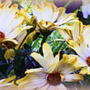 Marigold Blooms Art Print