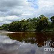 Marimbus River Brazil Reflections 4 Art Print