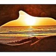 Marineland's Sunrise Dolphin Art Print