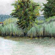 Mariner Point Park Art Print
