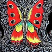 Mariposa 2 Art Print