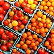 Market Fresh Tomatos Art Print