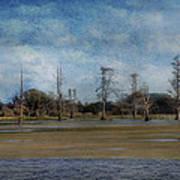 Marsh Lands  Art Print