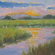 Marsh Light Art Print