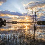 Marsh Sunrise Art Print
