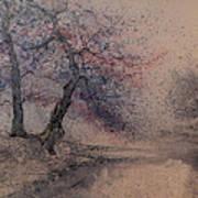 Marshell Creek Art Print