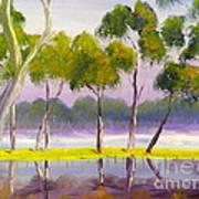 Marshlands Murray River Red River Gums Art Print