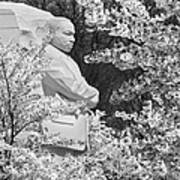 Martin Luther King Memorial Through The Blossoms Art Print by Mike McGlothlen