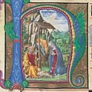Martini Francesco Di Giorgio, Nativity Art Print by Everett