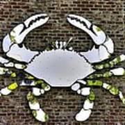Maryland Country Roads - Camo Crabby 1a Art Print
