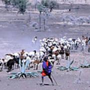 Masai Herder Boy Art Print